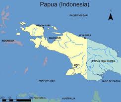 Menulis untuk memperkenalkan tanah Papua